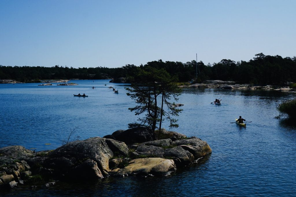 Kanotister i Stendörrens naturreservat.
