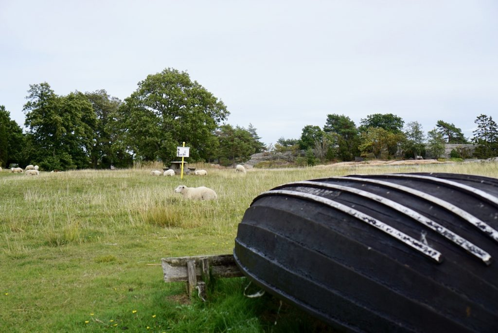 Fårhagen i Stendörrens naturreservat.