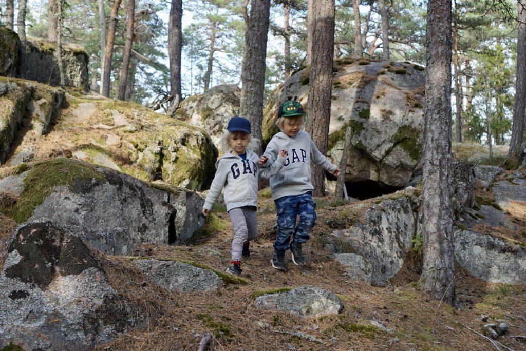 Superfin skog i Stendörrens naturreservat.